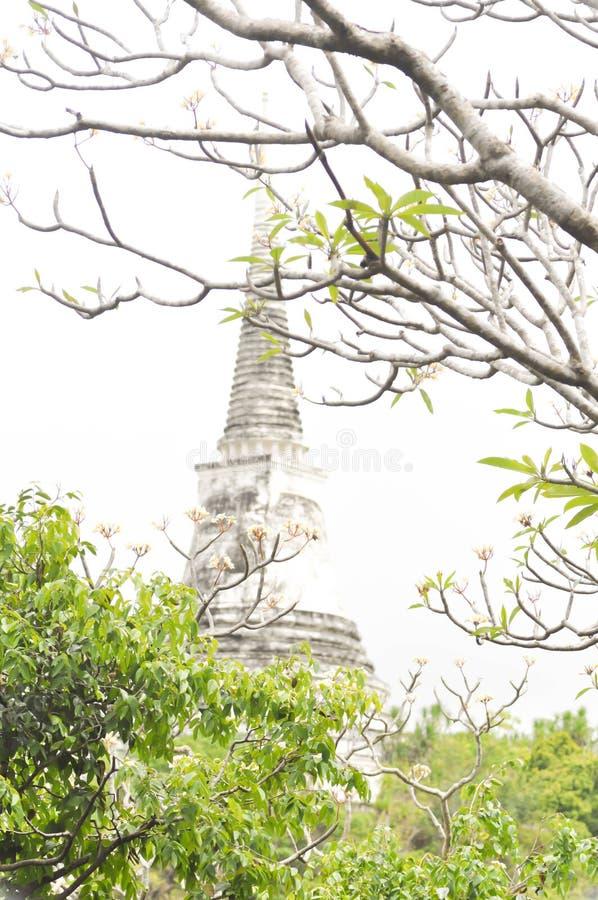 Pagode in Khao Wang Phetburi Thailand royalty-vrije stock foto