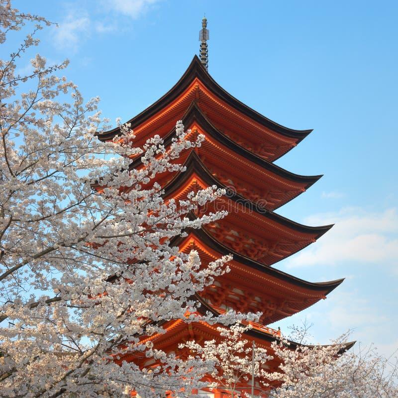 Pagode mit Kirschbäumen stockbilder