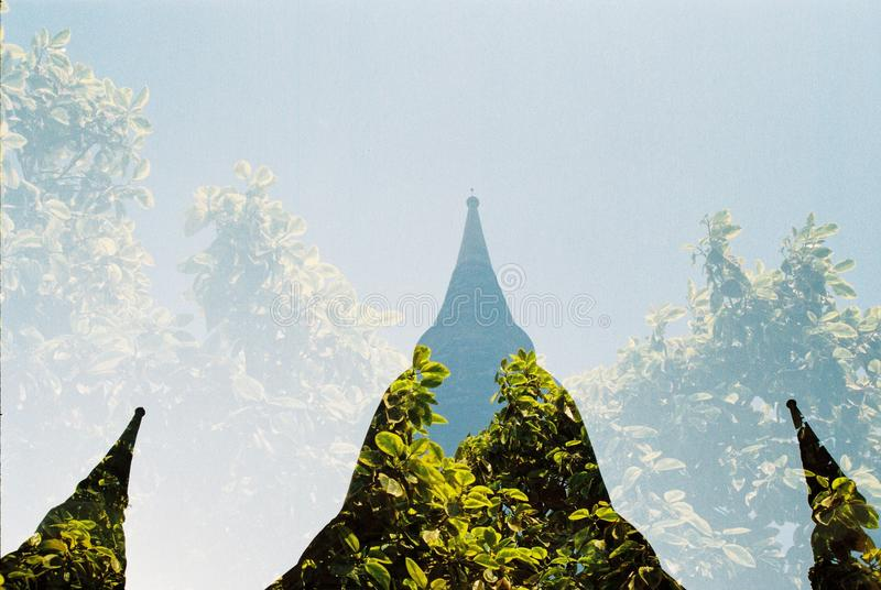 Pagode mit Natur lizenzfreie stockbilder