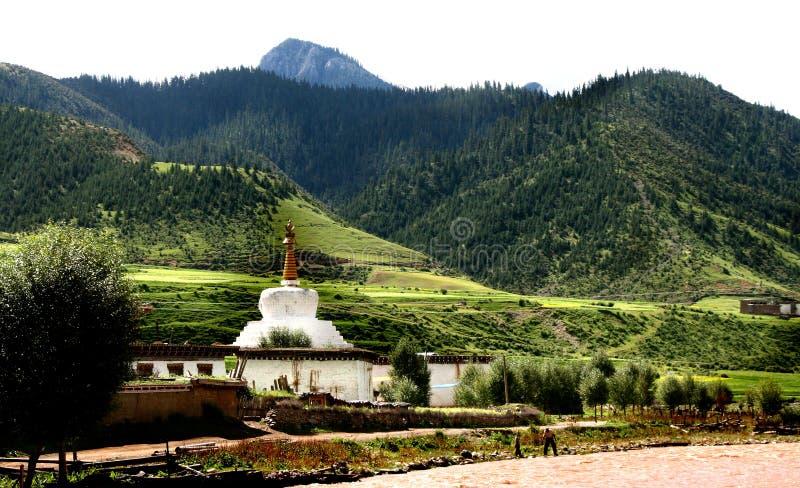 pagodowy biel zdjęcia royalty free