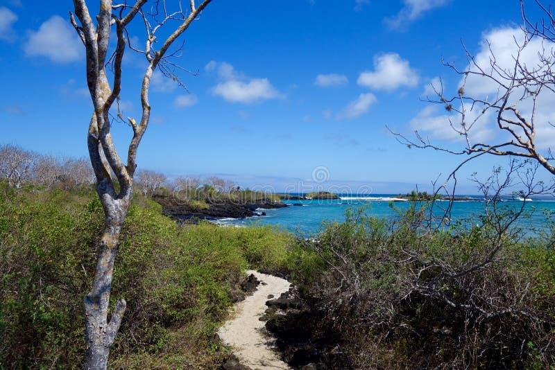 Pagos Galà ¡, παραλία νησιών Floreana, ίχνος στοκ εικόνες με δικαίωμα ελεύθερης χρήσης
