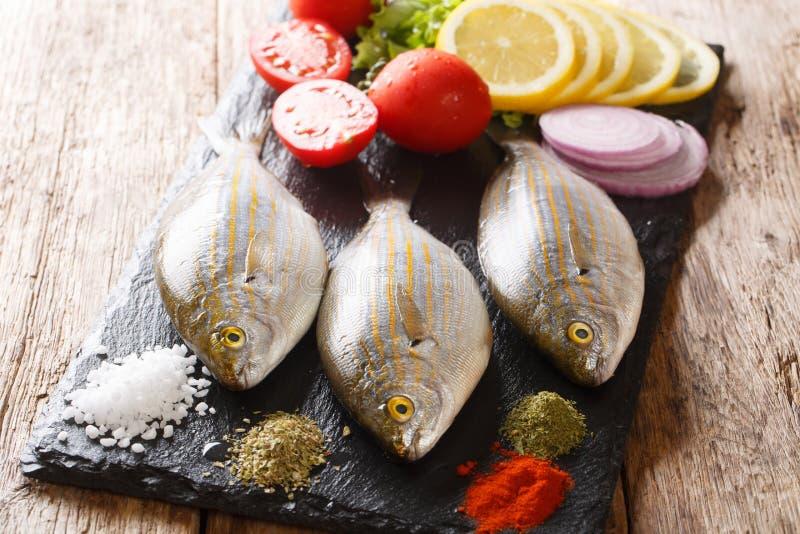 Pagre de Salema ou salpa cru de Sarpa avec les légumes frais et les épices en gros plan sur un panneau d'ardoise horizontal photographie stock
