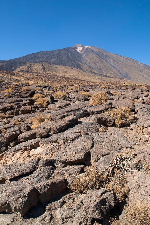 Pahoehoe lava at mount Teide. Pahoehoe lava at the foot of the mount Teide in Tenerife, Canary Islands stock photography