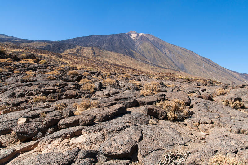 Pahoehoe lava at foot of Teide. Pahoehoe lava with the Teide volcano in the background in Tenerife, Canary Islands royalty free stock photo