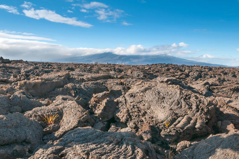 Pahoehoe volcanic rock Galapagos. View on Isabella island in the Galapagos with pahoehoe lava in the foreground stock image