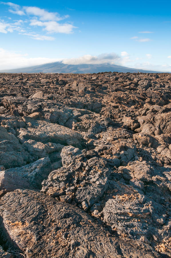 Pahoehoe volcanic rock Galapagos. View on Isabella island in the Galapagos with pahoehoe lava in the foreground stock photography