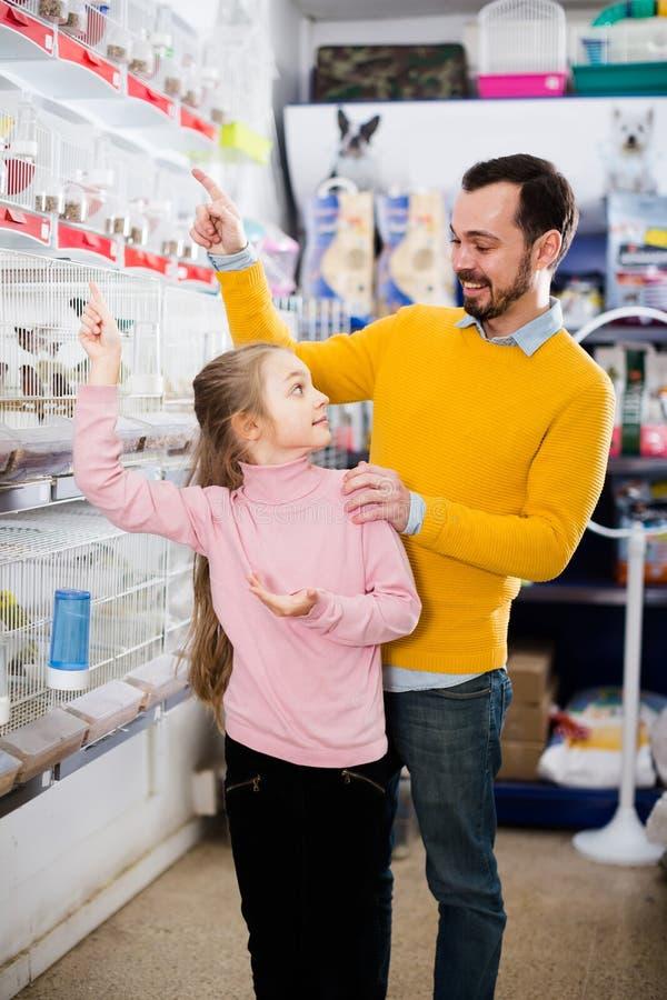 Pai com a menina que olha os pássaros fotografia de stock royalty free