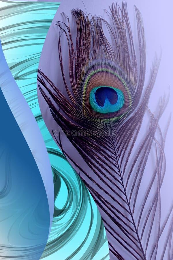 Pai do pavão com azul abstrato fundo protegido Ilustração do vetor ilustração stock