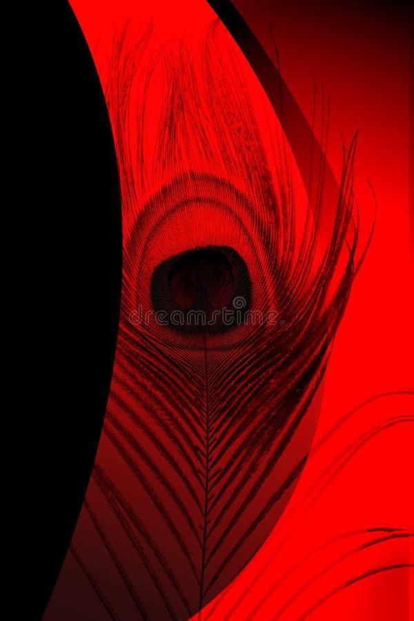 Pai do pavão com fundo protegido vermelho e preto abstrato Ilustração do vetor ilustração stock