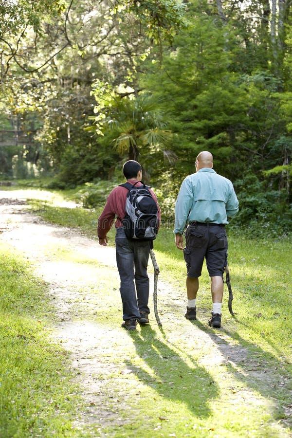 Pai e filho da vista traseira que caminham nas madeiras na fuga fotografia de stock royalty free