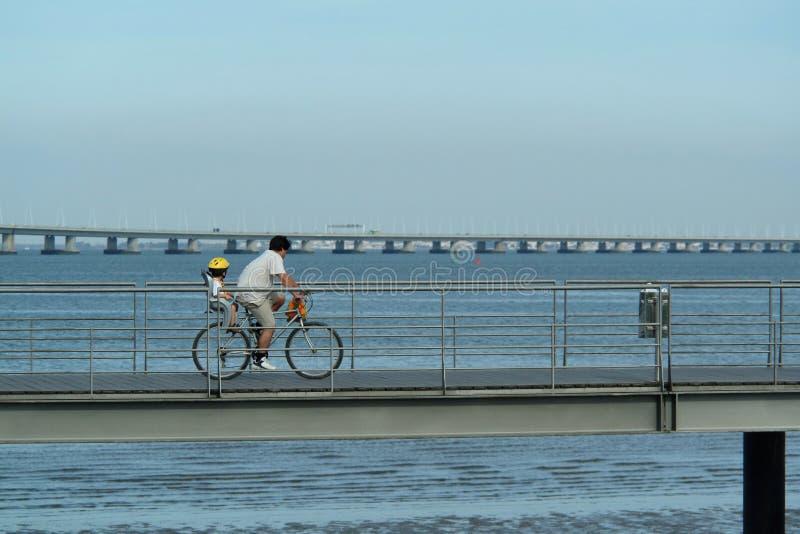 Pai e filho na bicicleta fotografia de stock