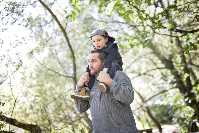 Pai e filho na floresta em um prado fotos de stock royalty free