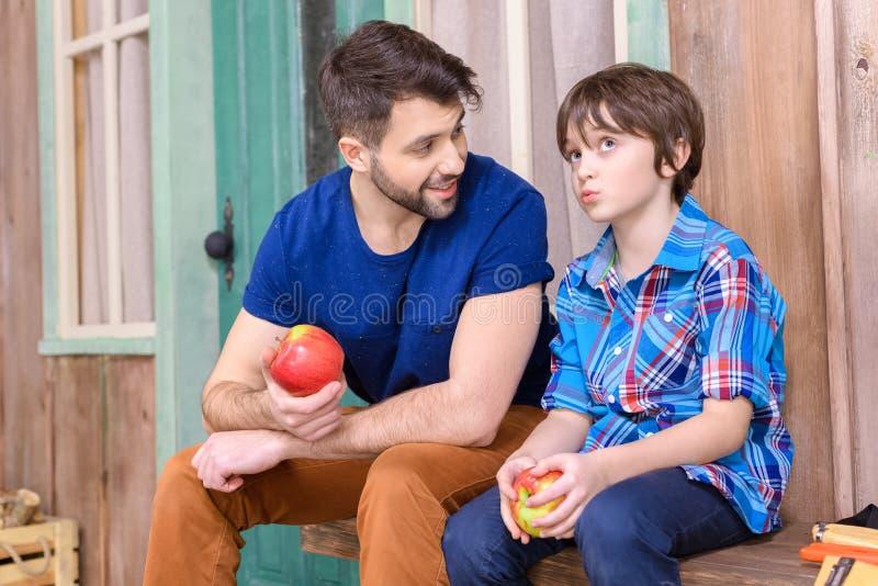 Pai e filho pensativo bonito que sentam-se no banco de madeira e que comem maçãs imagem de stock