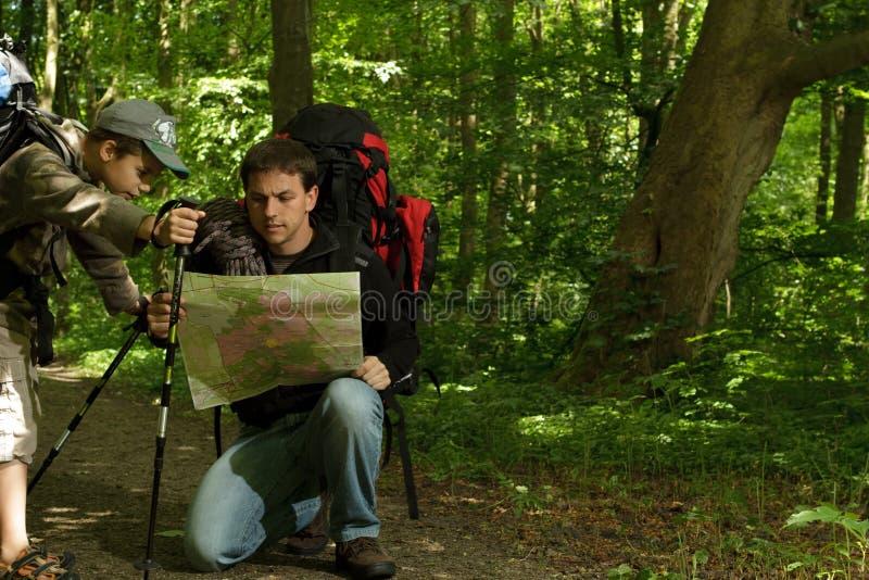 Pai e filho que caminham na floresta fotografia de stock