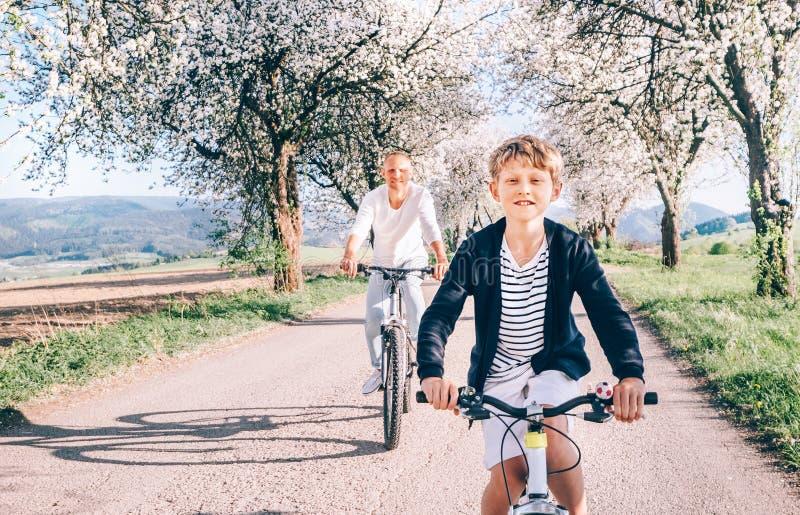 Pai e filho que têm o divertimento ao montar bicicletas na estrada secundária sob árvores da flor Imagem desportiva saudável do c foto de stock