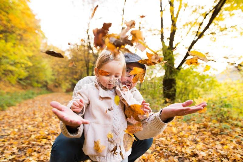 Pai novo com sua filha na floresta do outono imagem de stock