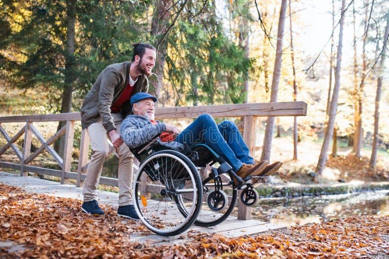 Pai sênior com cadeira de rodas e seu filho caminhando na natureza foto de stock