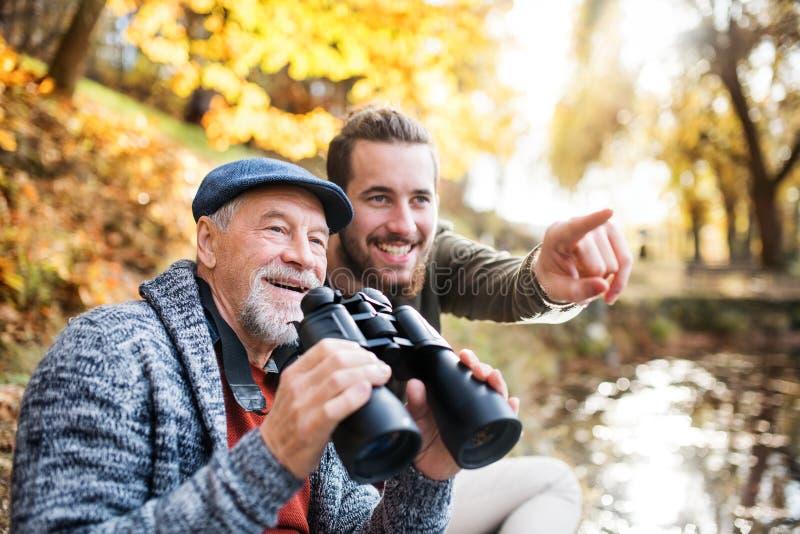 Pai sênior e seu filho com binóculos e na natureza, falando imagens de stock royalty free