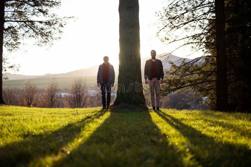 Pai superior e sua posição do filho pela árvore no por do sol, olhando a câmera fotografia de stock royalty free