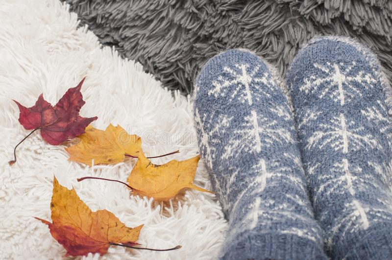 Paia dei calzini tricottati con i fiocchi di neve e le foglie di autunno variopinte di maplle fotografie stock libere da diritti