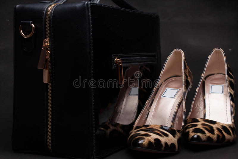 Paia delle scarpe e della borsa delle donne su fondo nero, pelli animali immagine stock
