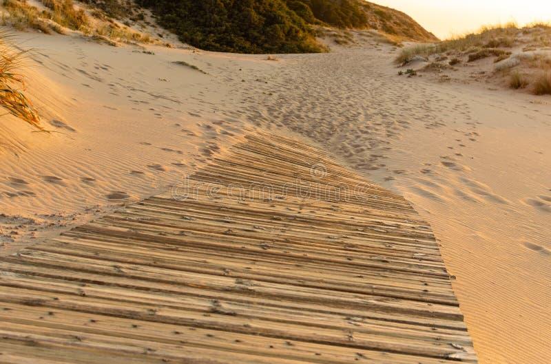 paiement Chemin en bois au-dessus du sable des dunes de plage au coucher du soleil, dans Trafalgar, Cadix, Espagne photos stock