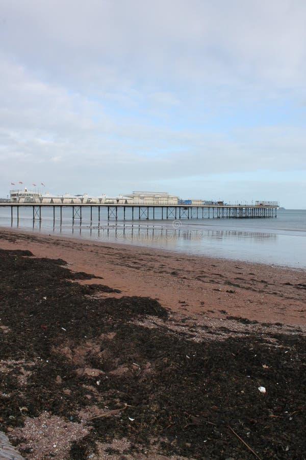Paignton-Strandansicht und -pier stockfotos