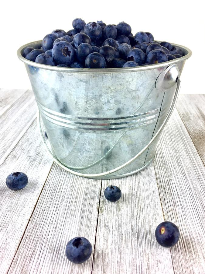 Pail full of blueberries. Metal pail of blueberries on a rustic white wood surface royalty free stock photos
