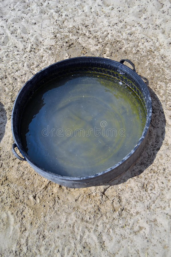 Pail full of water stock images