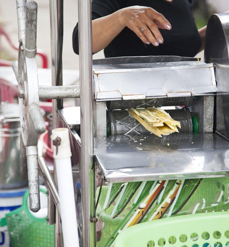 Paillage de la canne à sucre photographie stock libre de droits