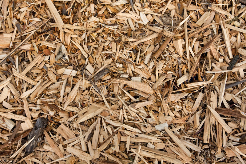 Paillis en bois image libre de droits