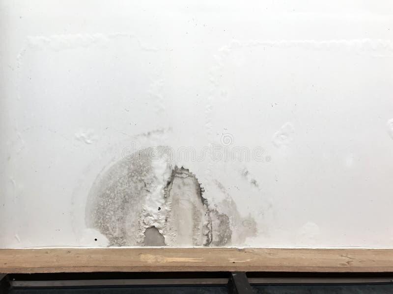 Painéis de teto na sala de visitas do telhado do escapamento chuvoso das tubulações de dreno foto de stock