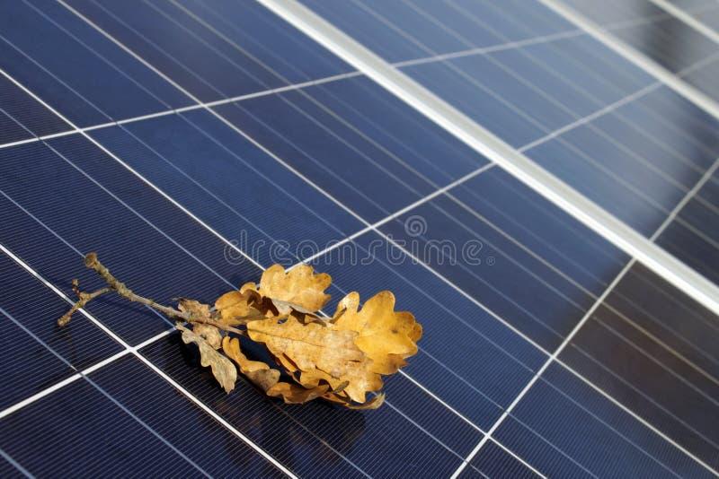 Painéis solares no outono fotos de stock