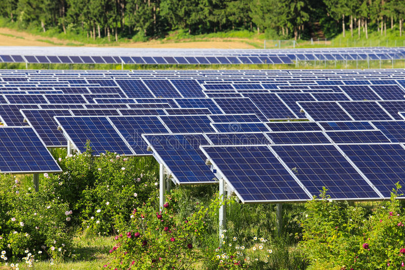 Painéis solares no verde foto de stock
