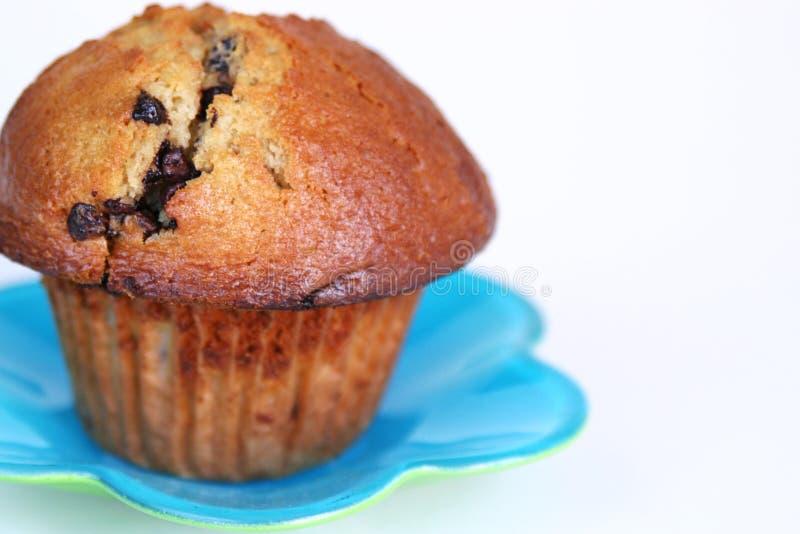 Download Pain photo stock. Image du isolement, cuisine, puces, cupcake - 725984