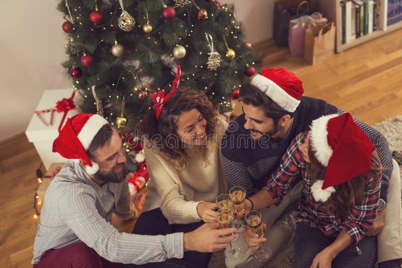 Pain grillé de Noël photographie stock libre de droits