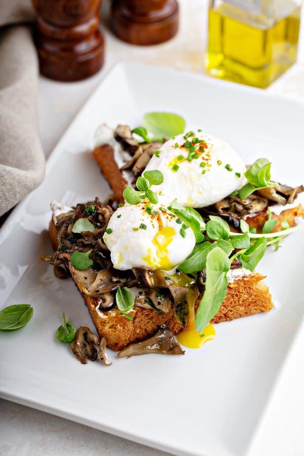 Pain grillé de petit déjeuner avec des champignons et des oeufs pochés image stock
