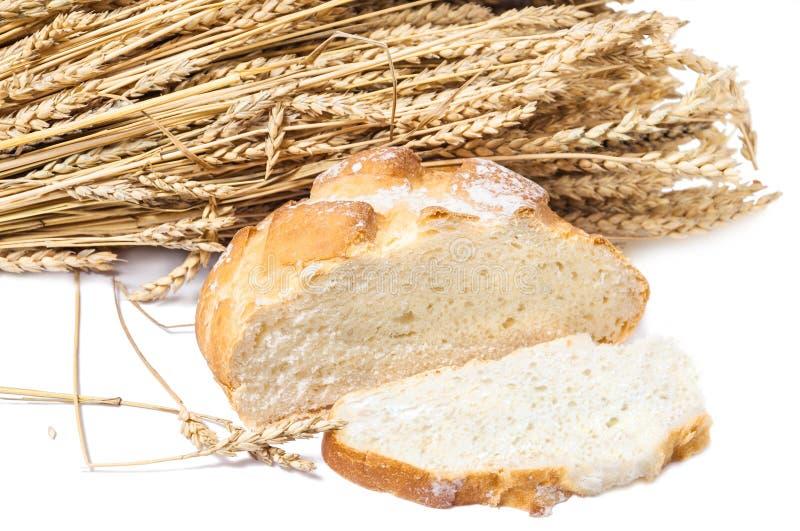 Pain sans levain de blé avec un morceau de coupe et des oreilles mûres de blé photo stock