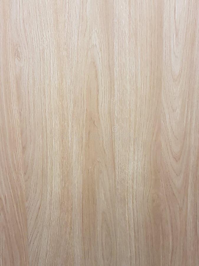 Painel da madeira de faia imagens de stock royalty free