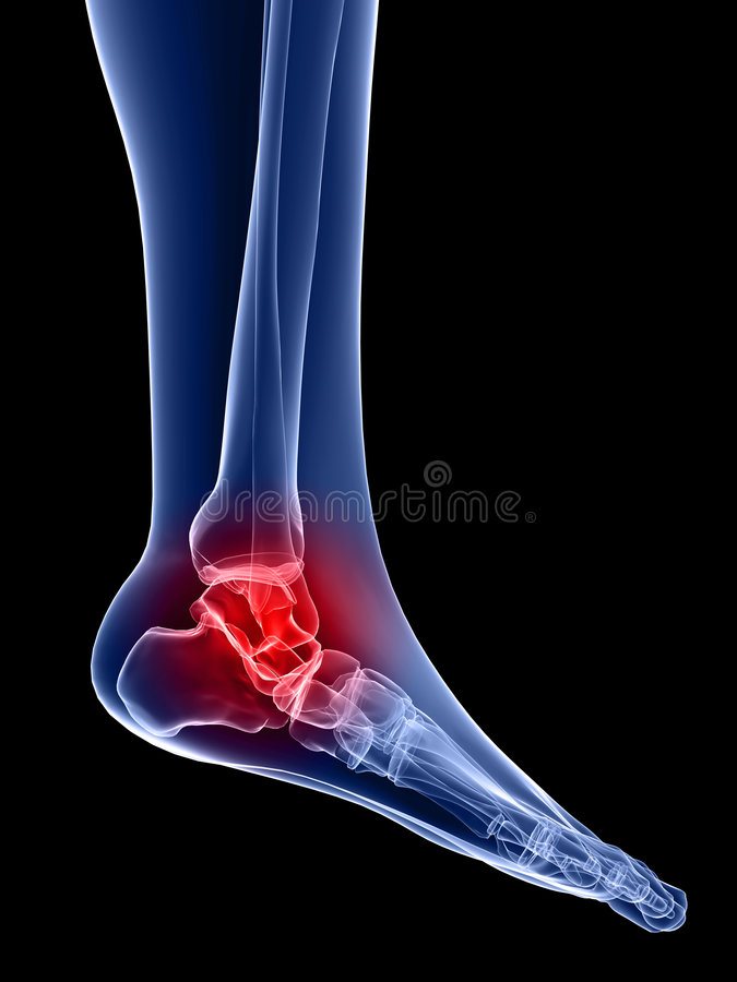 Painful ankle. 3d rendered anatomy illustration of a skeletal foot with pain