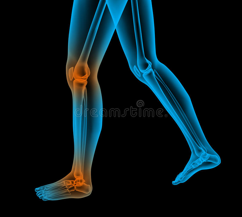 Download Painful foot render stock illustration. Image of ankle - 18959647