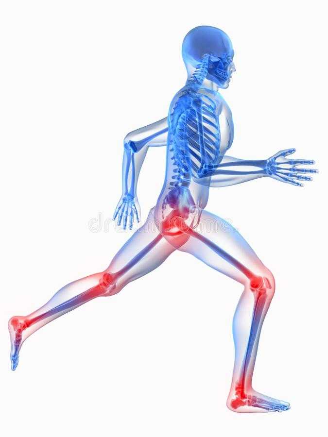 Painful joints. 3d rendered x-ray illustration of a running skeleton with highlighted hip and knee joints