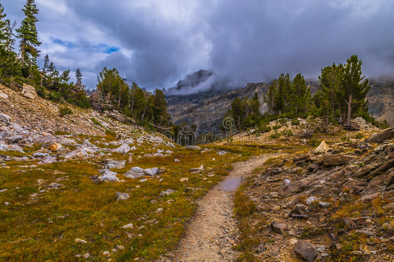 Paintbrush Canyon Grand Tetons royalty free stock images