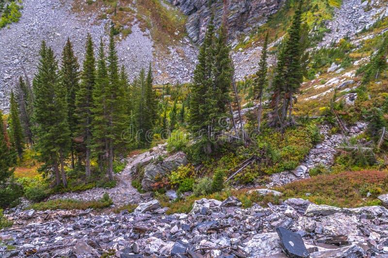 Paintbrush Canyon trail stock photo