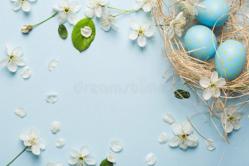 Painted blue Easter eggs on the background of cherry blossoms royalty free stock photos