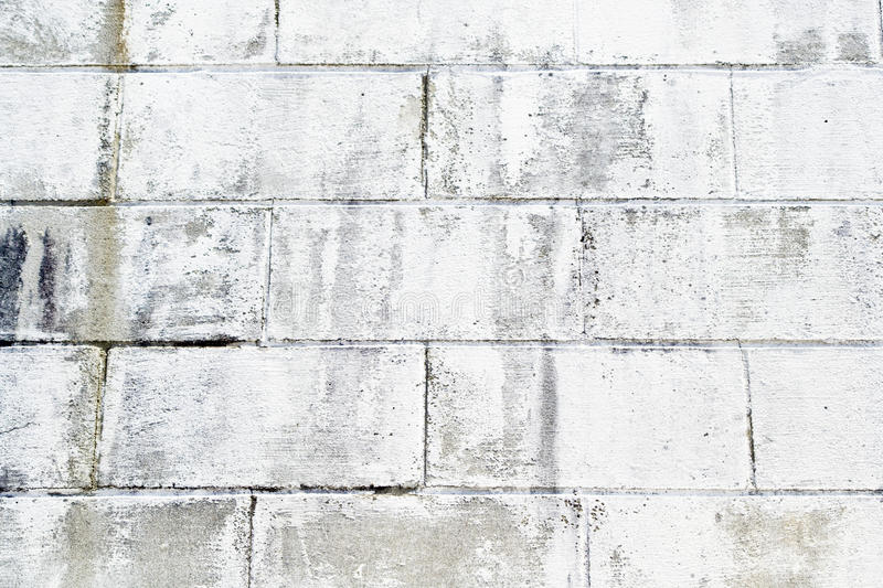Download Painted Brick Wall stock image. Image of surface, texture - 25262639