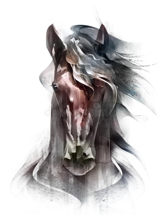 Painted colored horse portrait isolated in front royalty free illustration