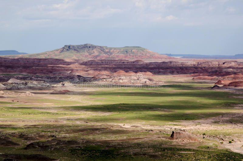 Download Painted Desert stock image. Image of forest, isolated - 33422963