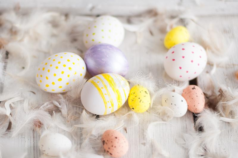 Easter, colored eggs, yellow, white, white tree, white background , feathersa , chicken eggs, quail eggs , stock image