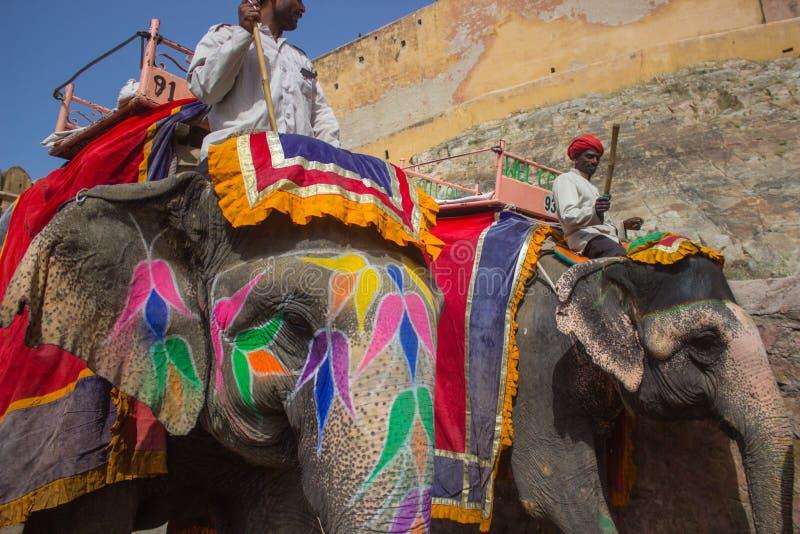 Painted elephants royalty free stock photo